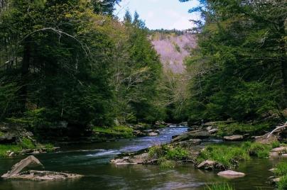 creek-